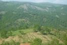 Ραχούλα - Ψηλό καραούλι